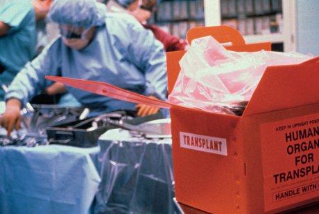 Transplantationsmedizin