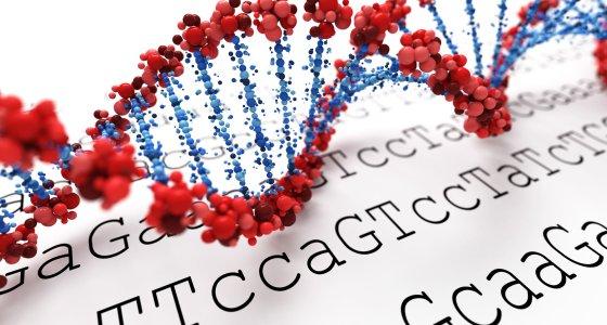 DNA-Doppelhelix, im Hintergrund AGCT-Kodierungen. /Leigh Prather, stockadobecom
