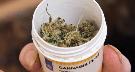 Medizinalcannabis in einer Dose /dpa