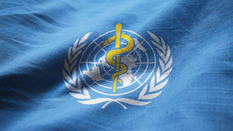Die WHO ist die Koordinationsbehörde der Vereinten Nationen für das internationale öffentliche Gesundheitswesen. Foto: shaadjutt36/stock.adobe.com