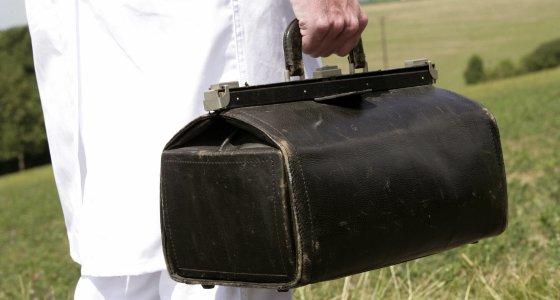 Arzt steht mit seiner schwarzen Arzttasche vor einer grünen Wiese. /picture alliance