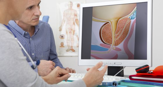Begutachtung der Prostata am Bildschirm /RFBSIP, stockadobecom