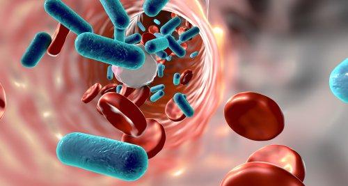 Wissenschaftler empfehlen COVID-19-Impfung auch nach Sepsis