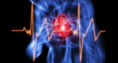 Herzinfarkt: Zusammenspiel von Entzündung und Fibrose im Fokus