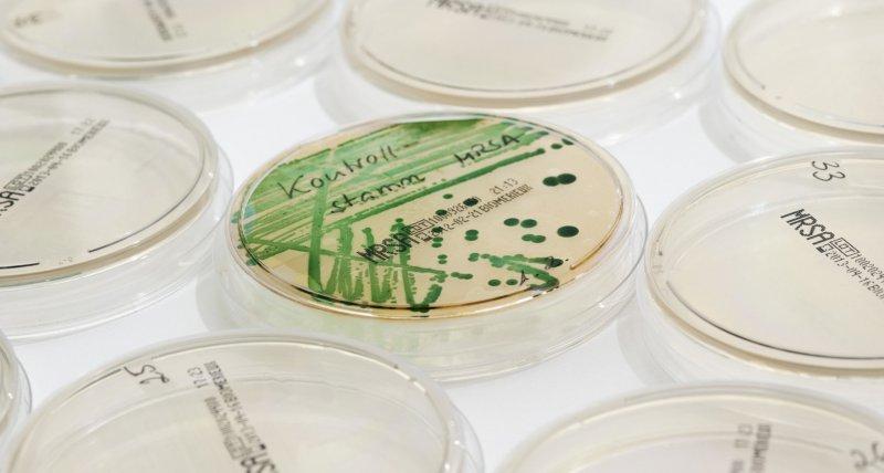Antibiotikaresistenzen weit verbreitet, Wissenslücken bei medizinischem Hilfspersonal