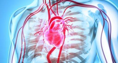Studie: Herzinsuffizienz und Schlaganfälle nehmen bei jungen Männern zu