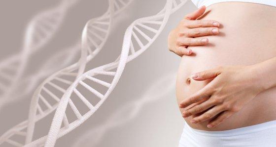 DNA schwangere Frau/llhedgehogll, stock.adobe.com