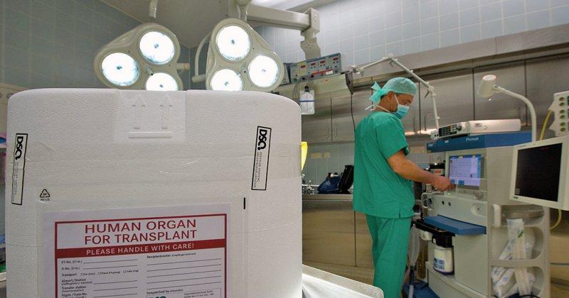 Organübertragung: Die Berichte sollen ein transparentes Bild der Transplantationsmedizin in Deutschland ergeben. Foto: dpa