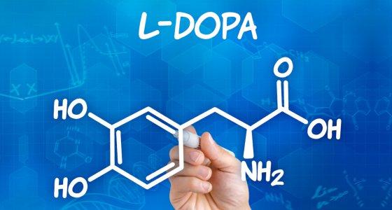 L-Dopa chemische Struktur/Zerbor adope.stock.com