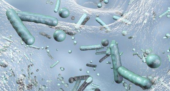 Antibiotikaresistente Bakterien in einem Biofilm, 3D-Darstellung. /Kateryna_Kon AdobeStock.com