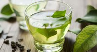Antioxidans im grünen Tee könnte gegen Antibiotikaresistenz wirken