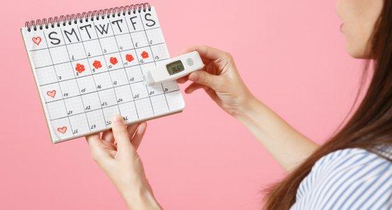 Frau hält ein Thermometer vor einen Zykluskalender, in dem die fruchtbaren Tage eingezeichnet sind. ViDi Studio AdobeStock.com