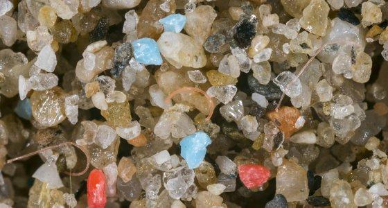 Plastikmüll am Strand gemischt mit Sand /picture alliance