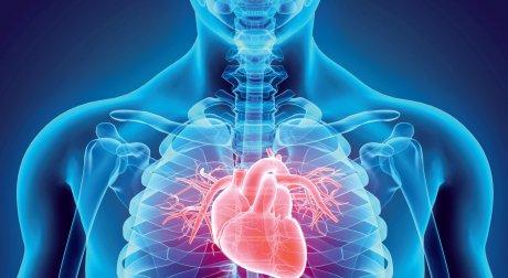 Studien auf dem Europäischen Kardiologenkongress