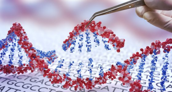Genetic engineering, GMO and Gene manipulation concept. Hand is inserting sequence of DNA. 3D illustration of DNA. //vchalup, stock.adobe.com
