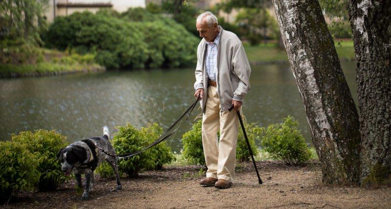 Studie: Haushund senkt Sterberisiko nach Herzinfarkt und Schlaganfall