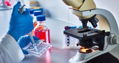 Studie identifiziert mögliche Hemmstoffe von SARS-CoV-2