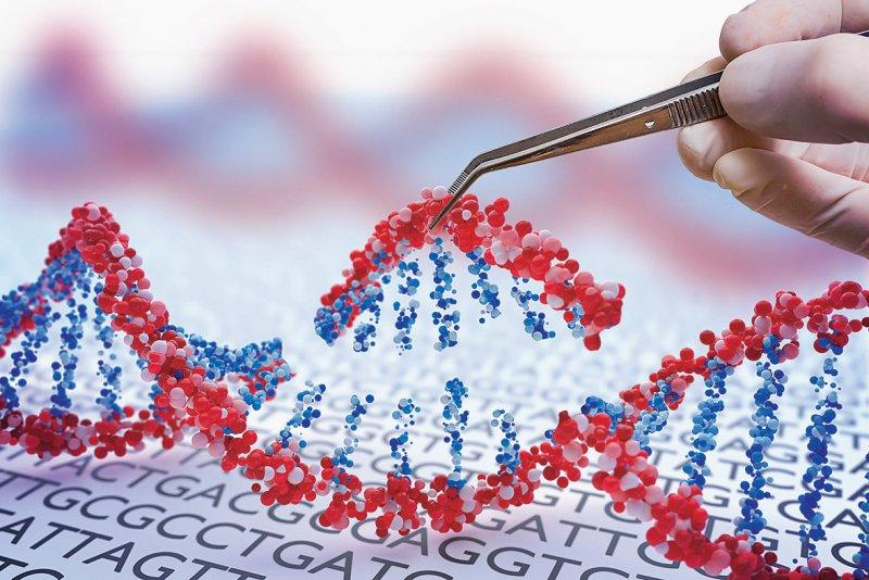 Eingriffe in die menschliche Keimbahn sind mit CRISPR/Cas grundsätzlich möglich. Foto: vchalup/stock.adobe.com