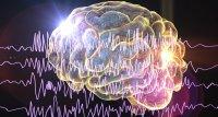 Störungen bei Hemm-Zellen begünstigen epileptischen Anfall
