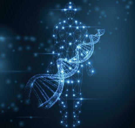 Erweiterte forensische DNA-Analyse zur Vorhersage...