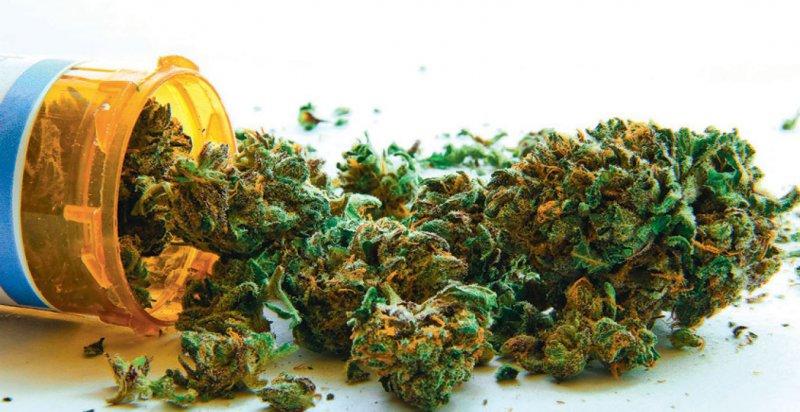 Wissen über die medizinische Wirkung und Risiken von Cannabis bündelt die neue Kurzinformation. Foto: Atomazul/stock.adobe.com