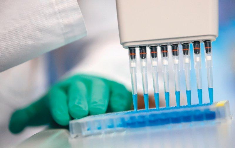 ELISA-basierte Testverfahren eignen sich zum Nachweis von Antikörpern gegen SARSCoV- 2 – ermöglichen allerdings (noch) keinen Immunitätsnachweis. Foto: picture alliance/Sven Hoppe/dpa