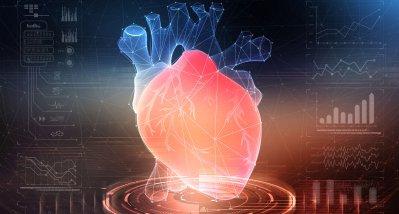 Das Herz enthält mehr Zelltypen als gedacht – Wissenschaftler legen Herzatlas vor
