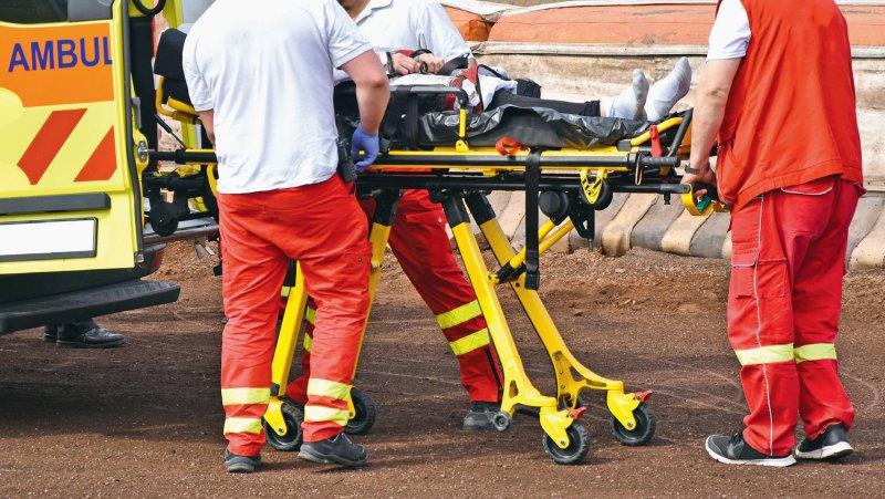 Foto: majorosl66/stock.adobe.com