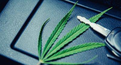 USA: Führt die Legalisierung von Cannabis zu mehr Verkehrsunfällen?