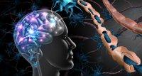 SARS-CoV-2: Studie beschreibt breites Spektrum neurologischer Komplikationen