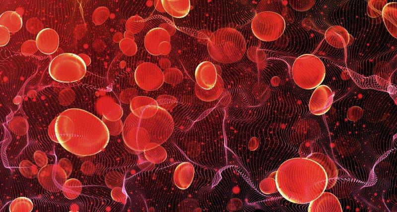 COVID-19: Immunthrombose in den kleinen Blutgefäßen könnte schwere Verläufe erklären