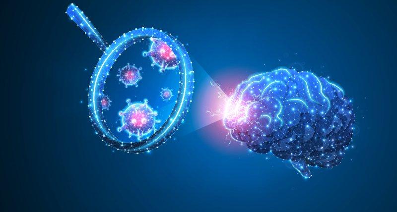 Studie: SARS-CoV-2 kann auch Gehirnzellen angreifen