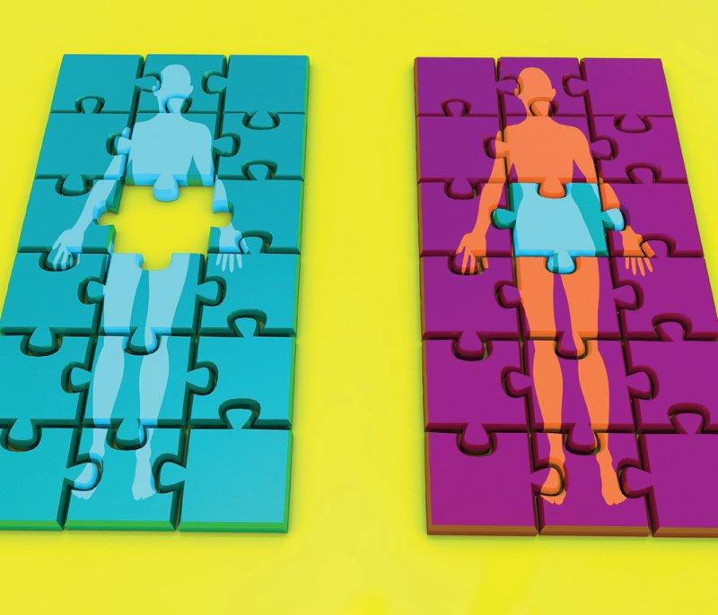 Für Gebärmuttertransplantationen gelten die Regeln des Transplantationsgesetzes. Foto: Science Photo Library/Darkin, Christian