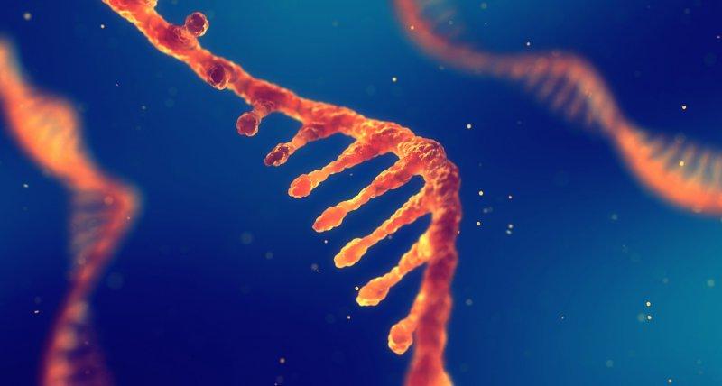 Biomarker im Blut kündigen Lungenkrebs frühzeitig an