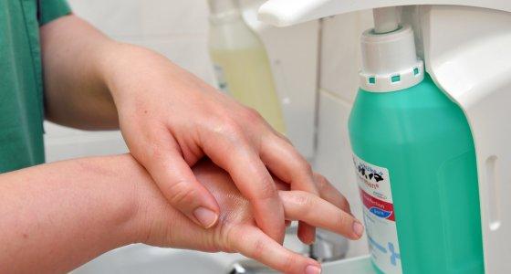Brandenburg, Prenzlau: Eine Krankenschwester reinigt sich ihre Hände mit Desinfektionsmittel in einem Kreiskrankenhaus. /picture alliance