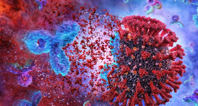 COVID-19: Studie findet robuste Antikörperantwort über mindestens 5 Monate