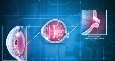 Gentherapie vermindert altersbedingten Sehverlust und Glaukomschäden bei Mäusen
