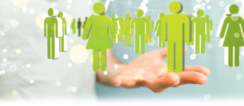Foto: vegefox.com/stock.adobe.com