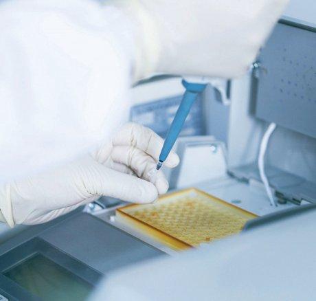 Molekularpathologische Routinediagnostik in der Präzisionsonkologie