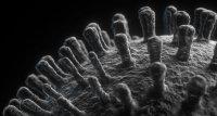 SARS-CoV-2: Laborexperimente deuten auf verminderte Schutzwirkung gegen neue Varianten hin