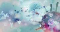 COVID-19: 2 Hersteller verkünden positive Studienergebnisse zu Antikörpercocktails