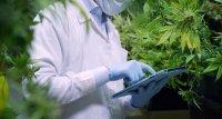 Patientenumfrage: Cannabis hilft bei Morbus Parkinson