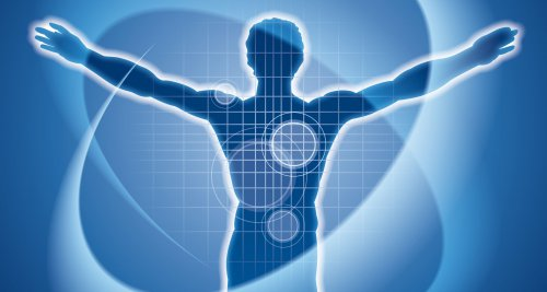 Entzündungsreaktionen: Suche nach genauerem Biosensor