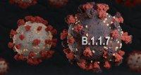 SARS-CoV-2: Variante B.1.1.7 laut Studie ansteckender, aber nicht tödlicher