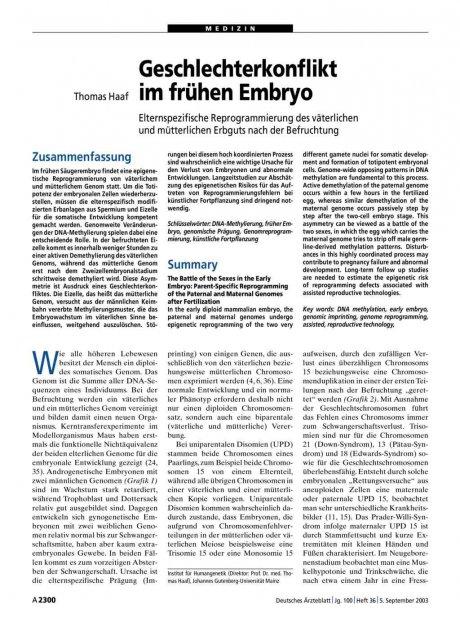Geschlechterkonflikt im frühen Embryo