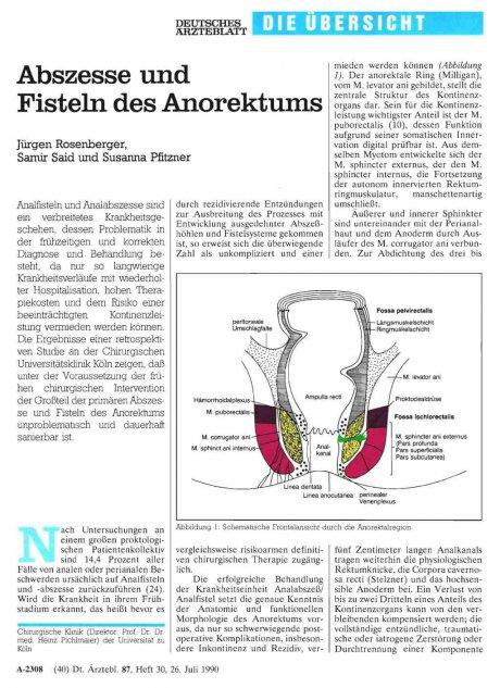 Abszesse und Fisteln des Anorektums