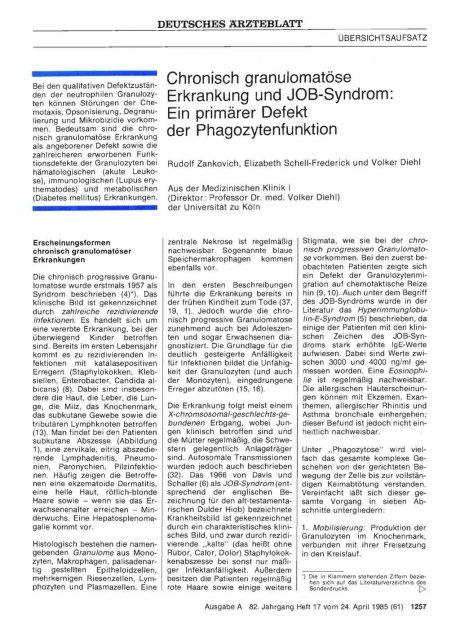 Chronisch granulomatöse Erkrankung und JOB-Syndrom