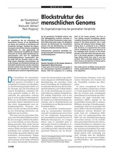 Blockstruktur des menschlichen Genoms