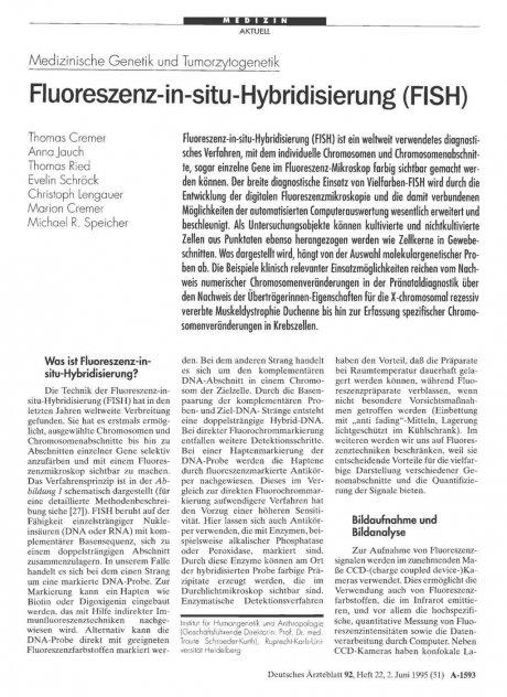 Medizinische Genetik und Tumorzytogenetik: Fluoreszenz-in-situ-Hybridisierung (FISH)